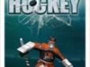 Jocuri cu Hockey