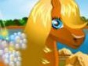 Jocuri cu Ingrijit ponei
