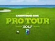 Jocuri cu Pro Tour Golf