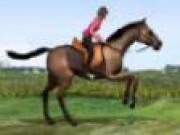 Jocuri cu Sarituri cu cai