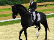 Jocuri cu cai de calarit 3d
