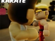 karate dintr o bucata