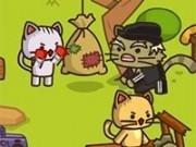 luptatorii pisici