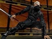 ninja 3d parkour